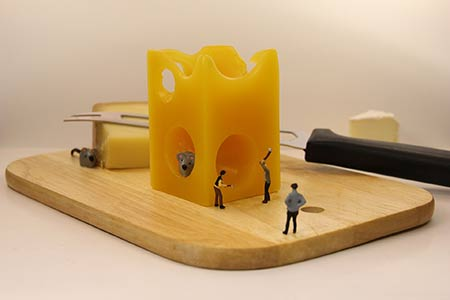 Fundamentos de quesería (próximamente)